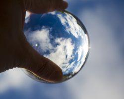 Klimaschutz: vegan bleibt Top unter den Ernährungsformen