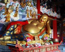 Buddhismus und Fleisch