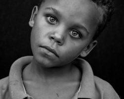 AfD-Anfrage: Berliner Verwaltung verbietet vegane Kindertagesstätte
