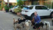 Warum ernähren Menschen ihre Hunde und Katzen vegan?