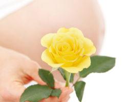 Vegane Ernährung für Schwangerschaft geeignet